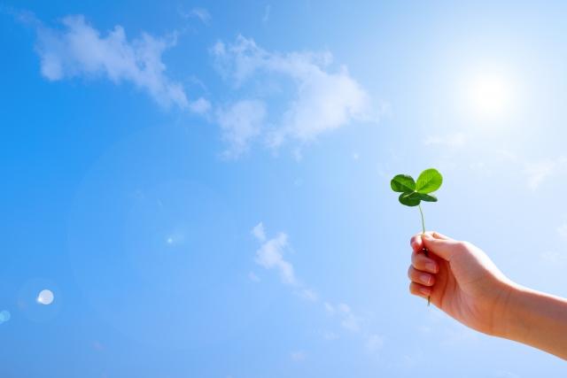 低炭素会社に向け提案 【バイオ配合の接着剤と合成紙で】